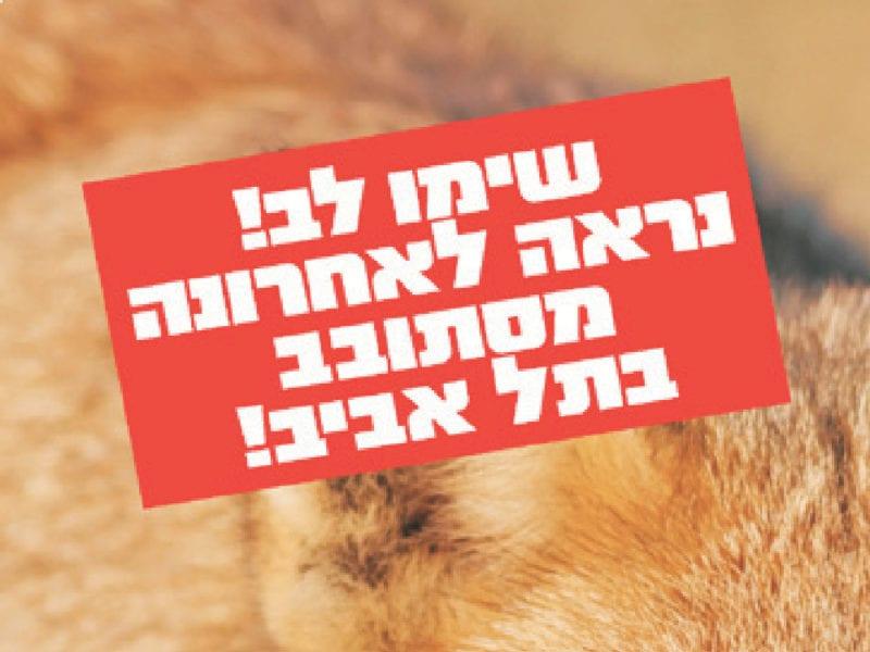 שימו לב נחש בתל אביב! - קמפיין לגני הטבע של תל אביב